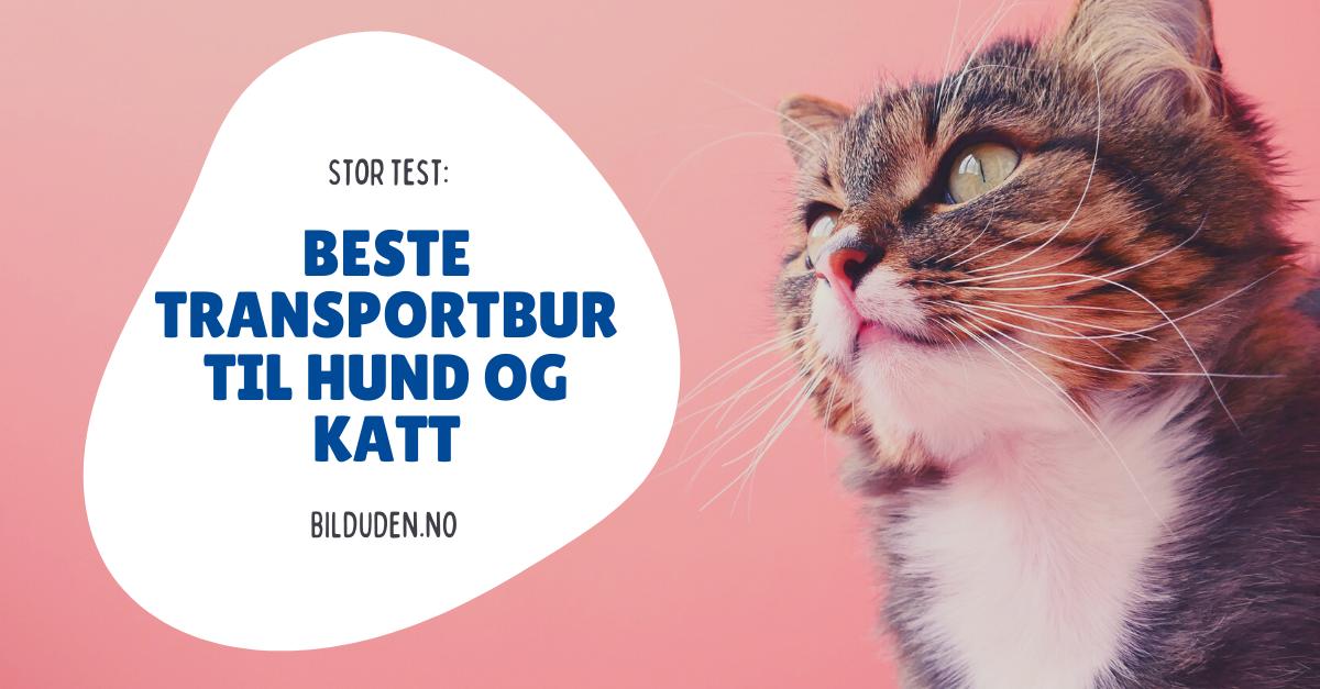Transportbur test: Beste 4 transportbur for hund og katt